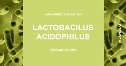 lactobacilus-acidophilus